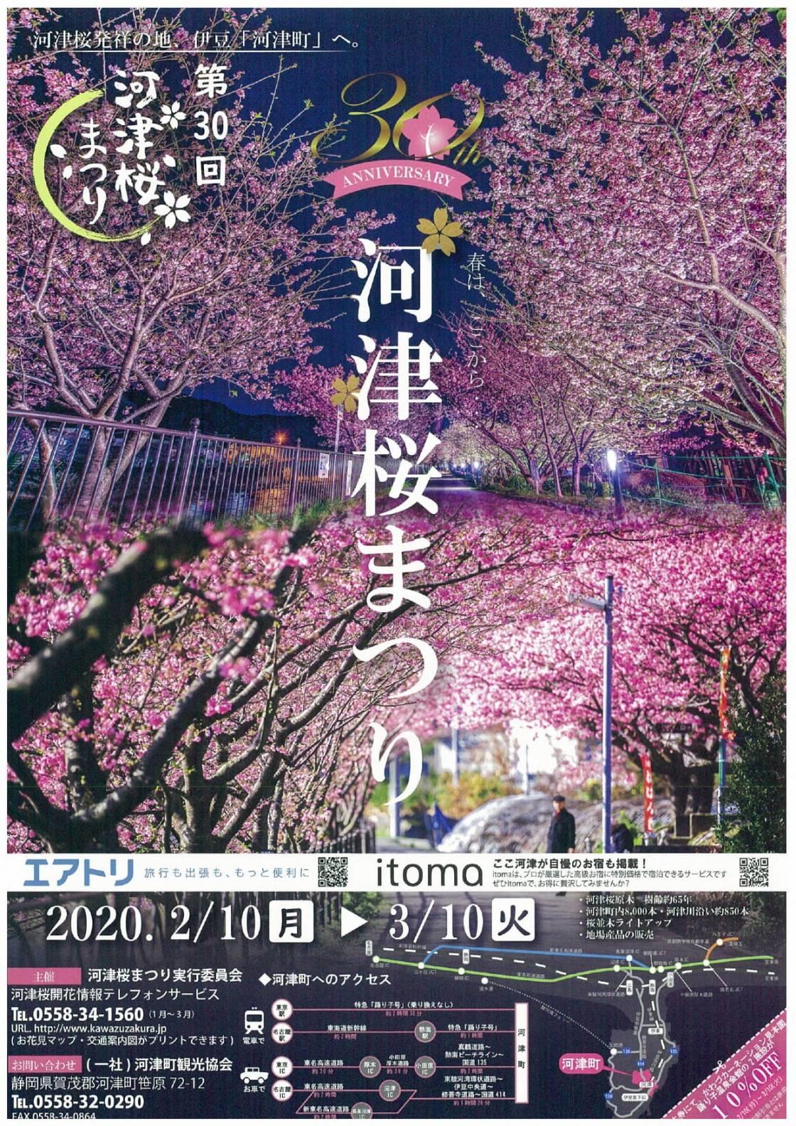 第30回 河津桜まつり
