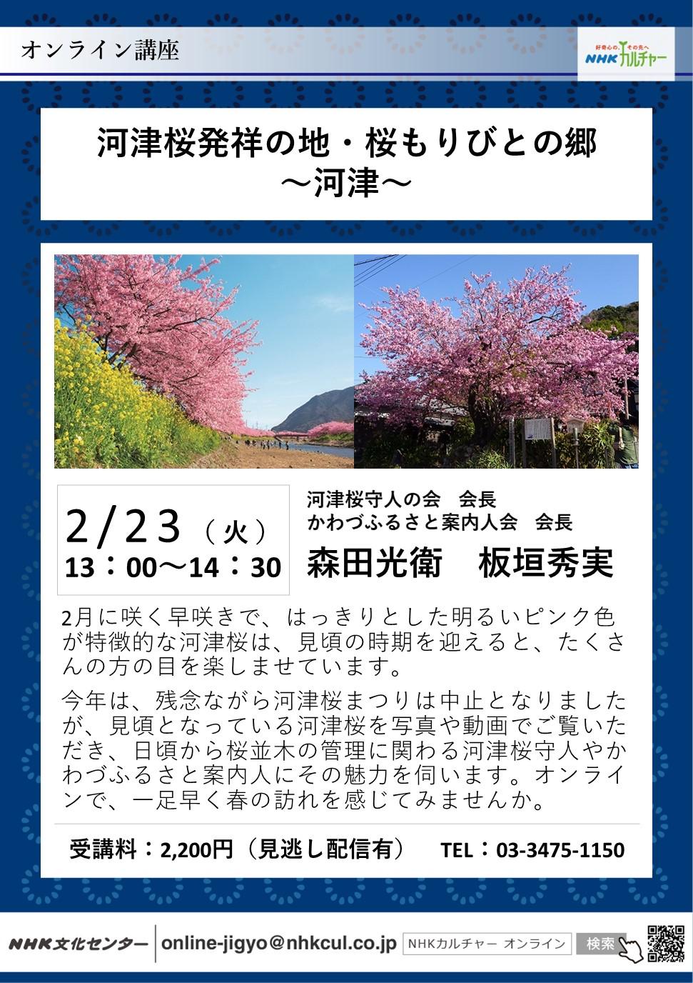 NHKオンライン講座 ~河津桜 知っているとお得情報